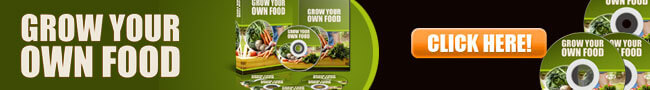 Grow Your Own Food 650x90